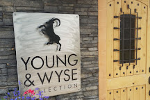 Young & Wyse Collection, Osoyoos, Canada