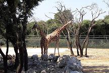 Parc Zoologique Henri de Lunaret, Montpellier, France