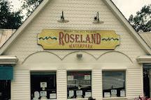 Roseland Waterpark, Canandaigua, United States