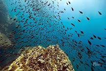 Diving Menorca, Menorca, Spain