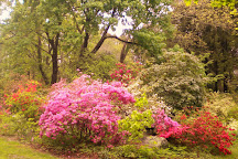 Kinney Azalea Garden, Kingston, United States