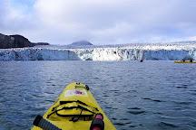 Svalbard Wildlife Expeditions, Longyearbyen, Norway