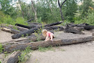 Jacob Island Dog Park