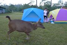 Phu Kradueng National Park, Phu Kradueng, Thailand