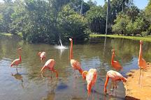Sarasota Jungle Gardens, Sarasota, United States