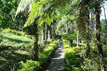 Jawaharlal Nehru Botanical Garden, Gangtok, India