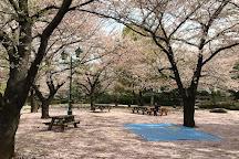 Hamacho Park, Chuo, Japan