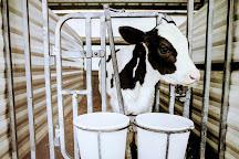 Kreider Farms, Manheim, United States