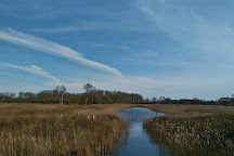 Sculthorpe Moor Nature Reserve, Fakenham, United Kingdom