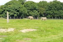 Knowsley Safari, Prescot, United Kingdom