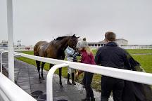 Ffos Las Racecourse, Trimsaran, United Kingdom