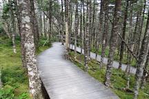 Salmonier Nature Park, Holyrood, Canada