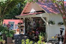 Lavender Fields Herb Farm, Glen Allen, United States