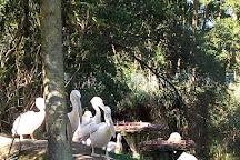 Westkustenpark & Robbarium, Sankt Peter-Ording, Germany