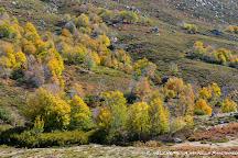 Plateau de Coscione, Quenza, France