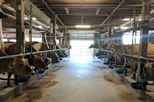 Sprout Creek Farm, Poughkeepsie, United States