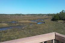 Withlacoochee Gulf Preserve, Yankeetown, United States
