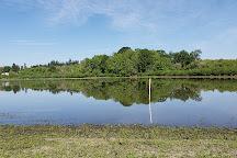 Jackson Bottom Wetlands Preserve, Hillsboro, United States