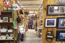 The Flea Market in Edinburg, Edinburg, United States