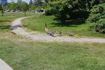Bronte Heritage Park, Oakville, Canada