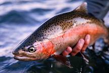 AC Fly Fishing, Redding, United States