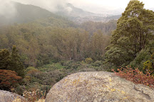 Doddabetta Peak, Ooty (Udhagamandalam), India