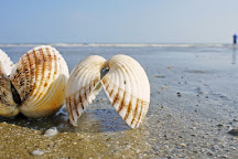 Sandlapper Water Tours, Charleston, United States