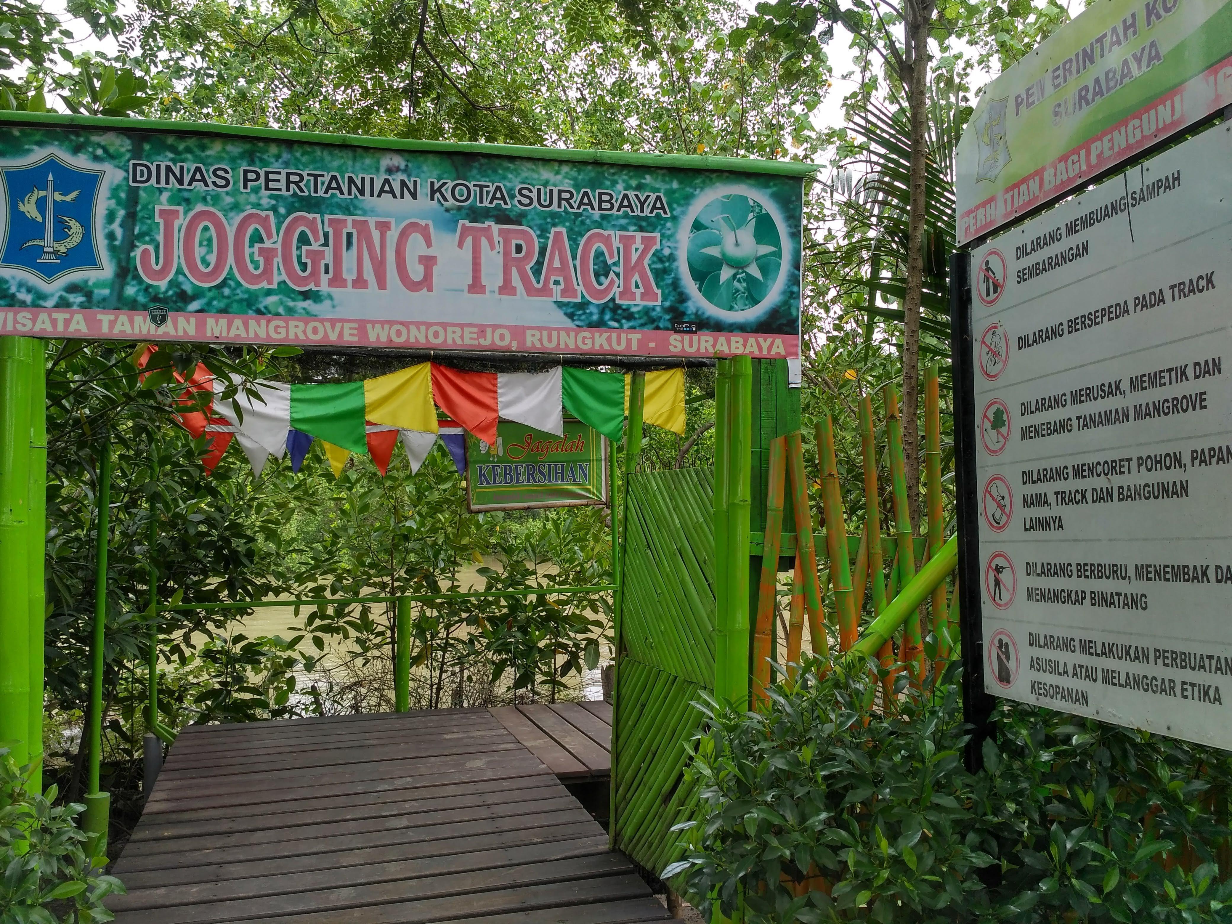 Jogging Track Taman Mangrove Wonorejo