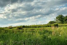 Negri-Napote Native Grassland Preserve, Somerset, United States