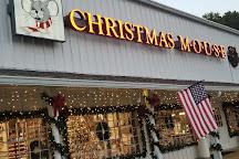 Christmas Mouse, Williamsburg, United States