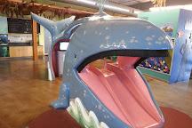 Santa Maria Valley Discovery Museum, Santa Maria, United States