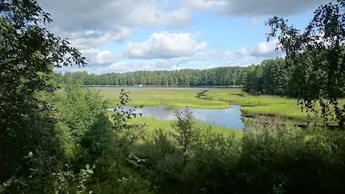 järve