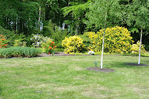 Rhododendronpark, Graal-Mueritz, Germany