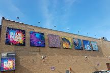 Briar Street Theatre, Chicago, United States