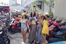 Key West Moped, Key West, United States