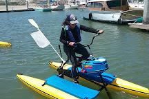 Monterey Bay Hydrobikes, Moss Landing, United States