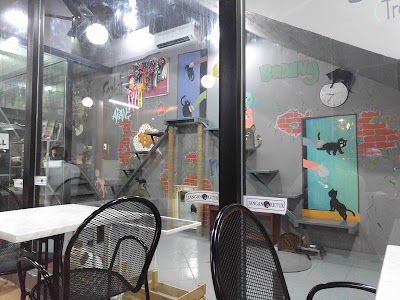 Good Meowning Cafe (Cheras)