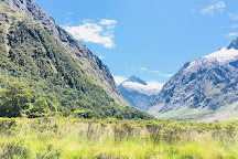 Monkey Creek, Milford Sound, New Zealand