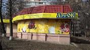 ЛотОК, улица Михаила Ломоносова на фото Киева