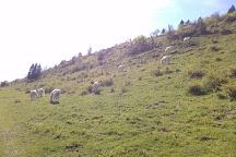 Source de la Saine, Foncine-le-Haut, France
