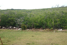 Varahicacos Ecological Reserve, Varadero, Cuba