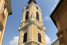 PrzemySl Cathedral & Basilica, Przemysl, Poland
