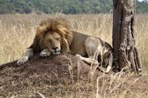 Royal Private Safaris, Nairobi, Kenya