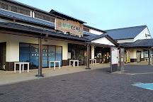Michi-no-Eki Kaki no Sato Kudoyama, Kudoyama-cho, Japan