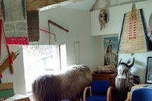 Bush Farm Bison Centre, Warminster, United Kingdom