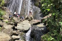 El Yunque National Forest, Rio Grande, Puerto Rico