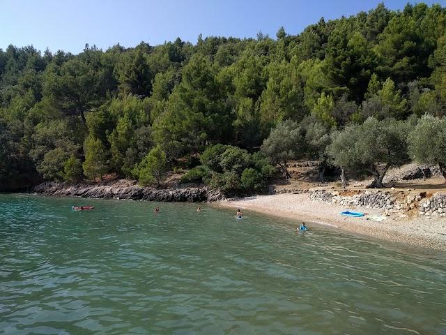 Plaža Nava