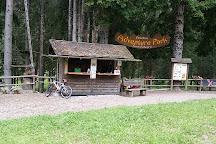 Dolomiti Adventure Park, Forni di Sopra, Italy