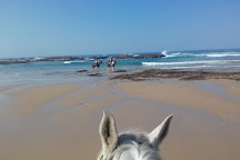 Beachcomber Horse Trails, Kenton-on-Sea, South Africa