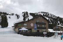 Alta Ski Area, Alta, United States